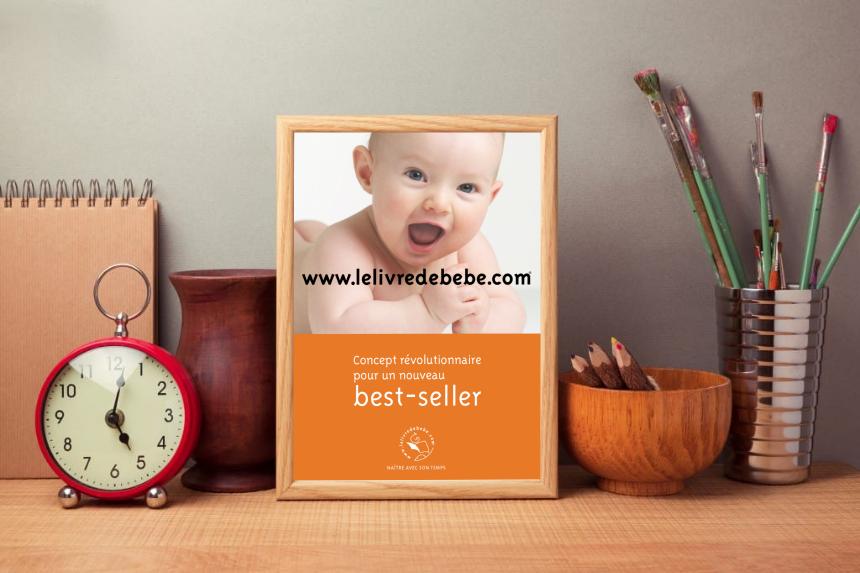 Réalisation micraux : Le livre de bébé